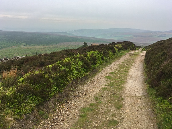 Trail of the Black Hambleton walk in North York Moors, England