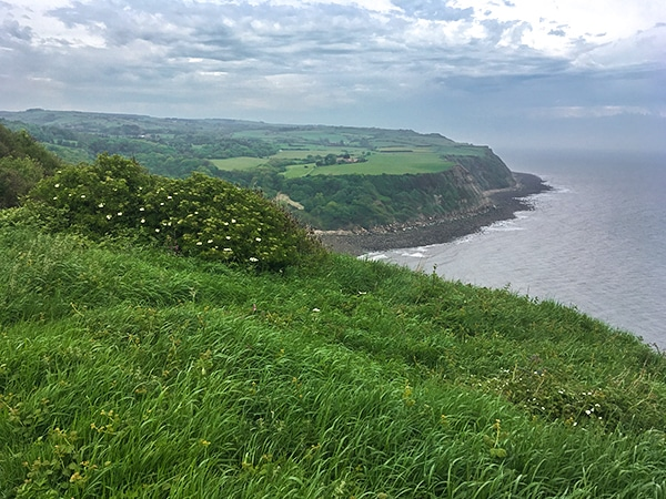 Trail of the Cloughton and Hayburn Wyke walk in North York Moors, England