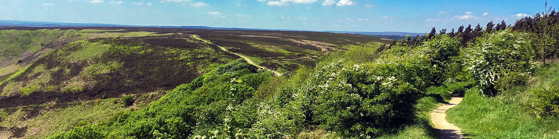 Panorama from the Hole of Horcum walk in North York Moors, England
