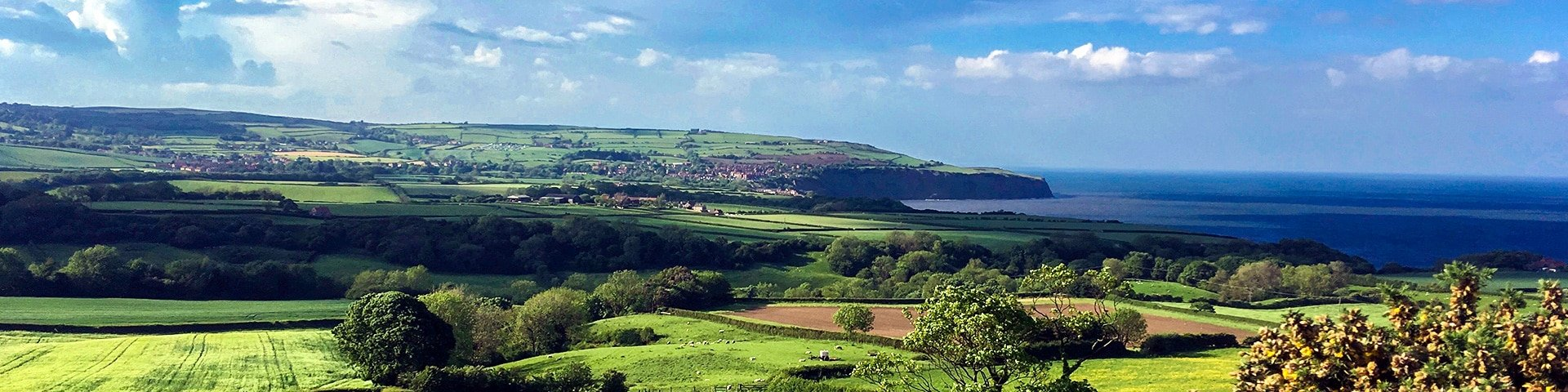 Panorama from the Ravenscar and Robin Hood's Bay walk in North York Moors, England