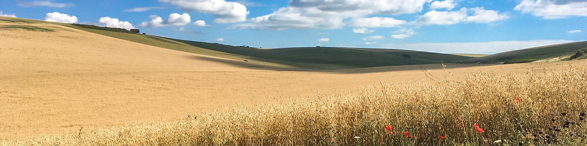 Panorama of the East Dean, Beachy Head and Birling Gap walk in South Downs, England