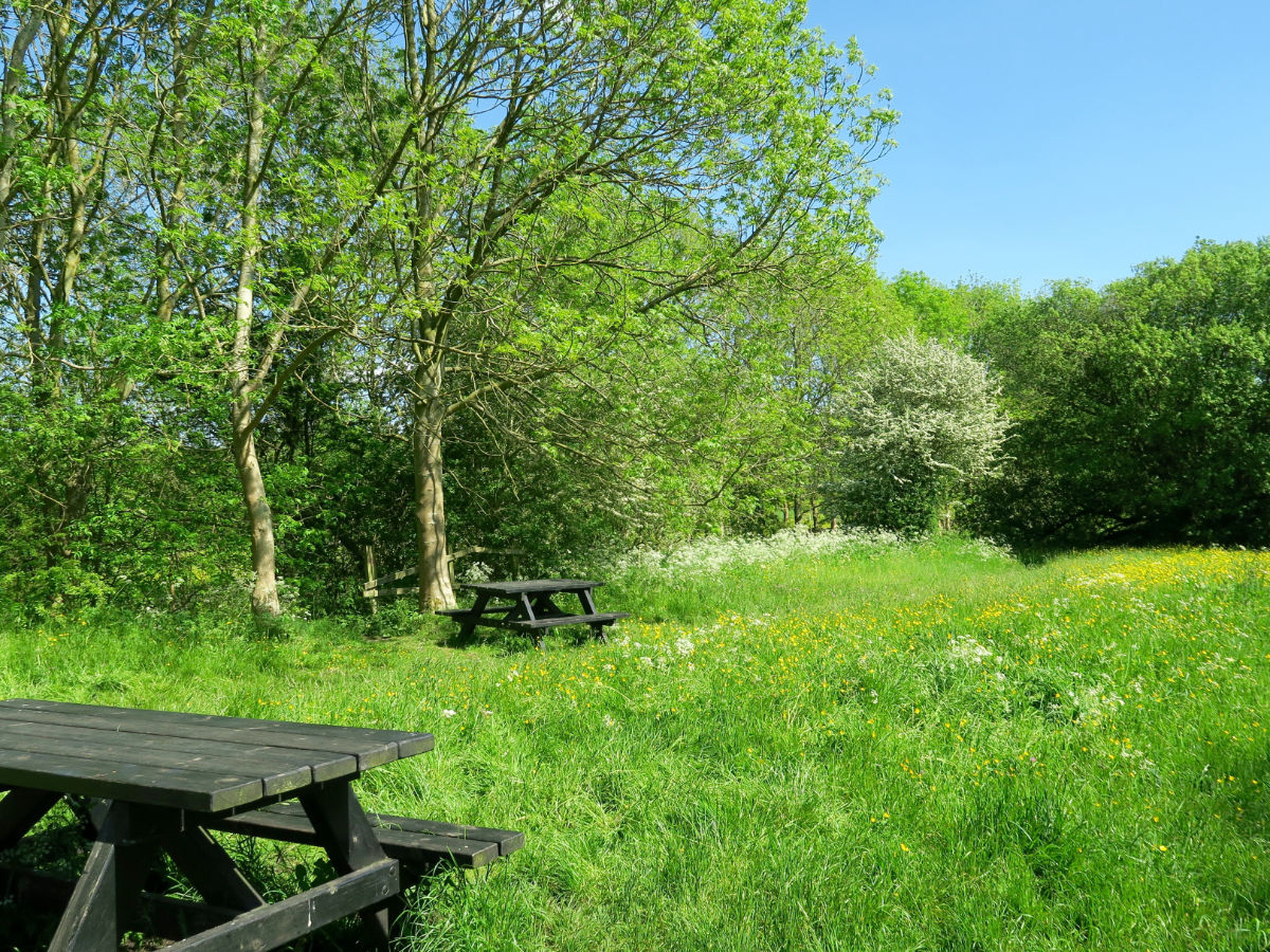 Picnic spot on the Monsal Trail Hike in Peak District, England