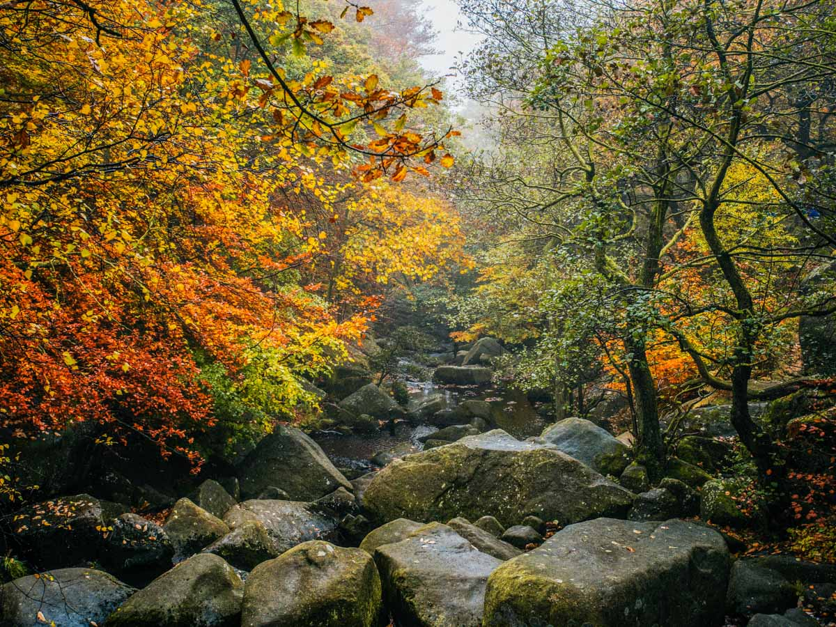 Walking into the gorge on the Padley Gorge Hike in Peak District, England