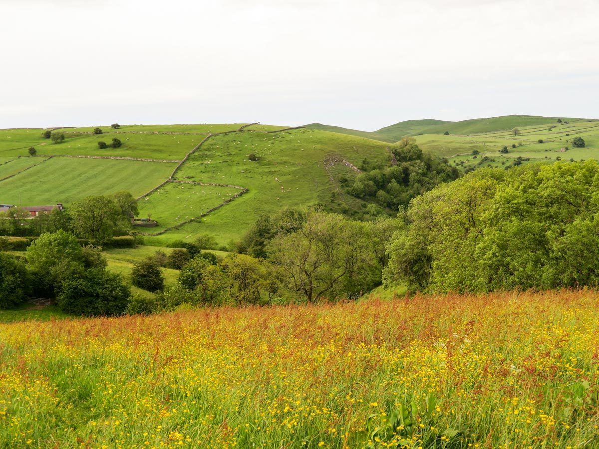 The rolling Derbyshire Hills on Thor's Cave and The Manifold Valley Hike in Peak District, England