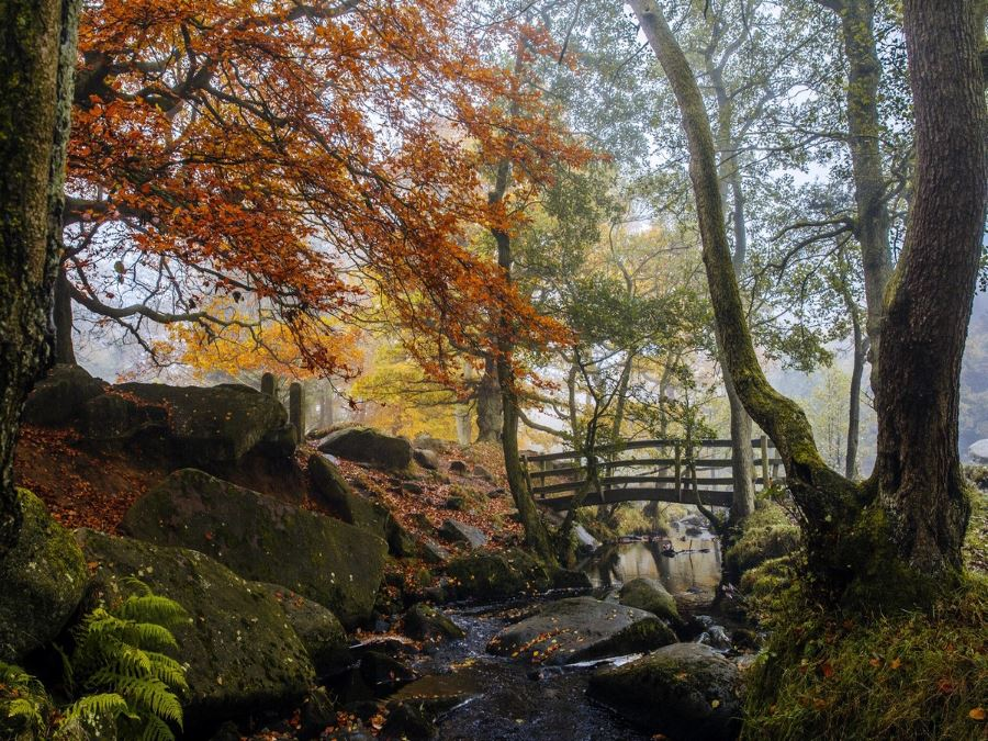 Padley Gorge Hike is one of top 10 hikes in Peak District, England