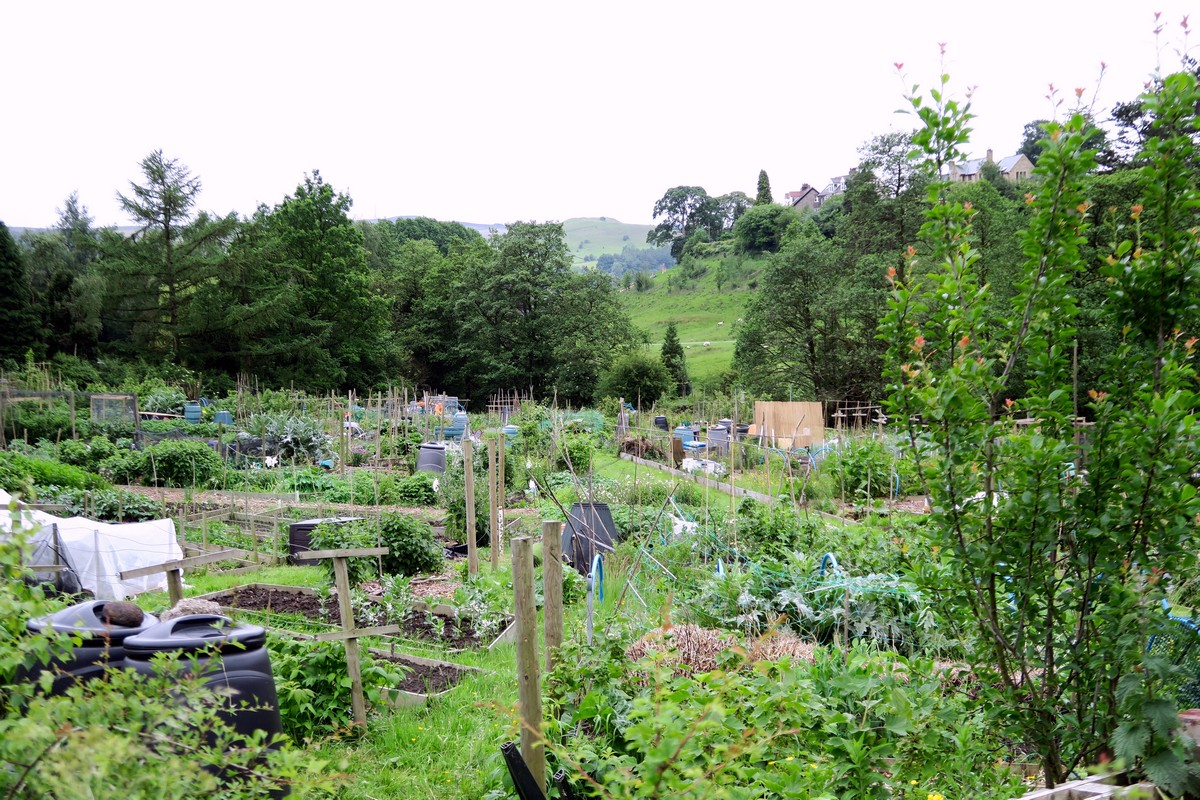 Village allotment on the Stanage Edge from Hathersage Hike in Peak District, England
