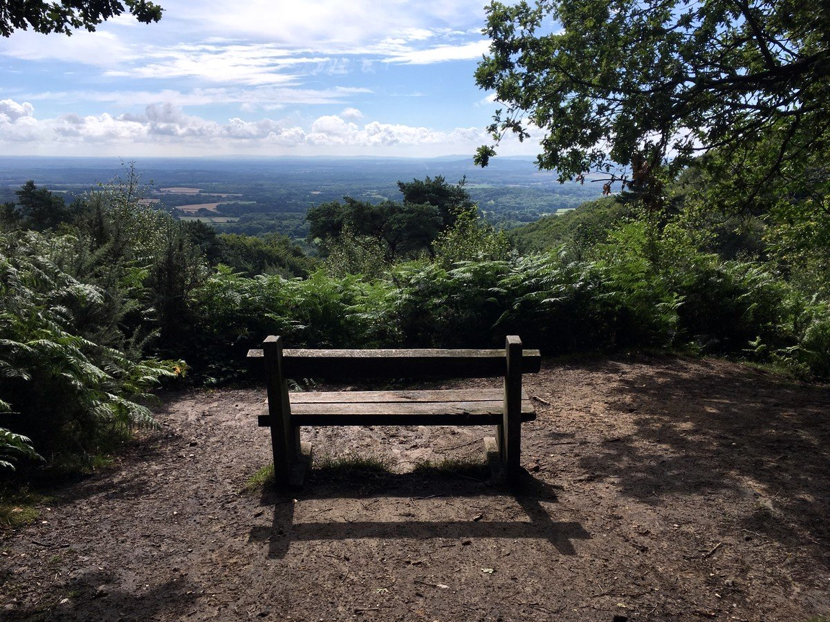 Viewpoint to the west from Black Down