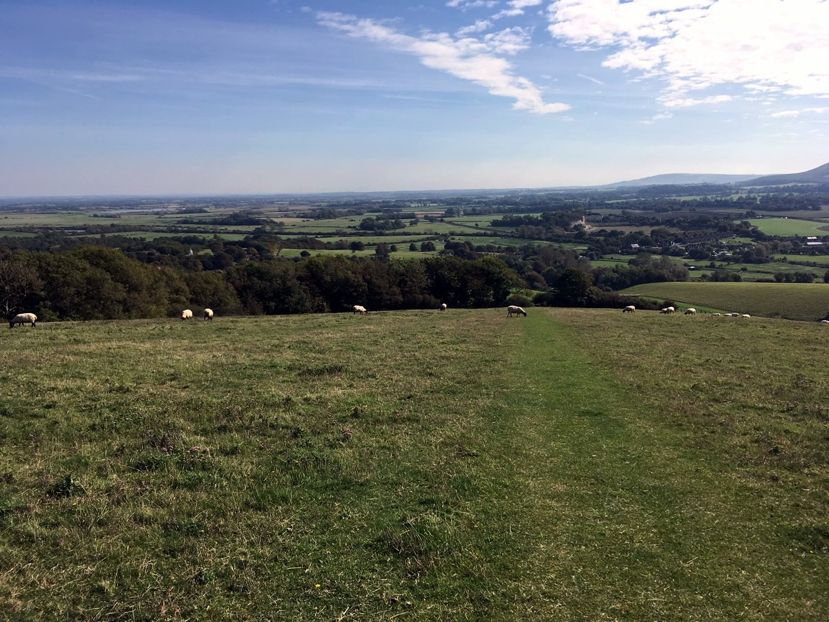 The returning trail of the Glynde and Mount Caburn Hike in South Downs, England