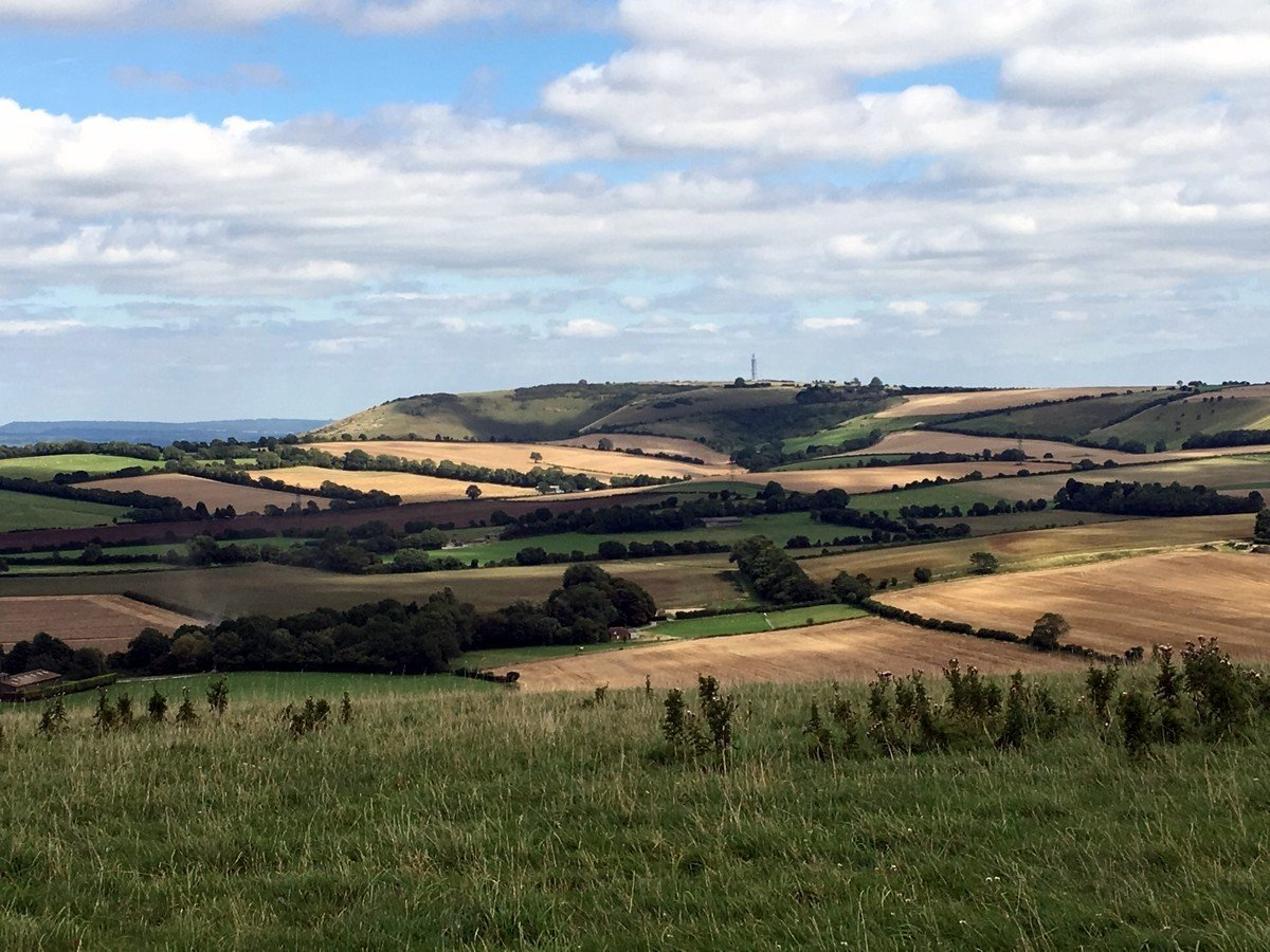View of Butser hill on a hike in South Downs, England