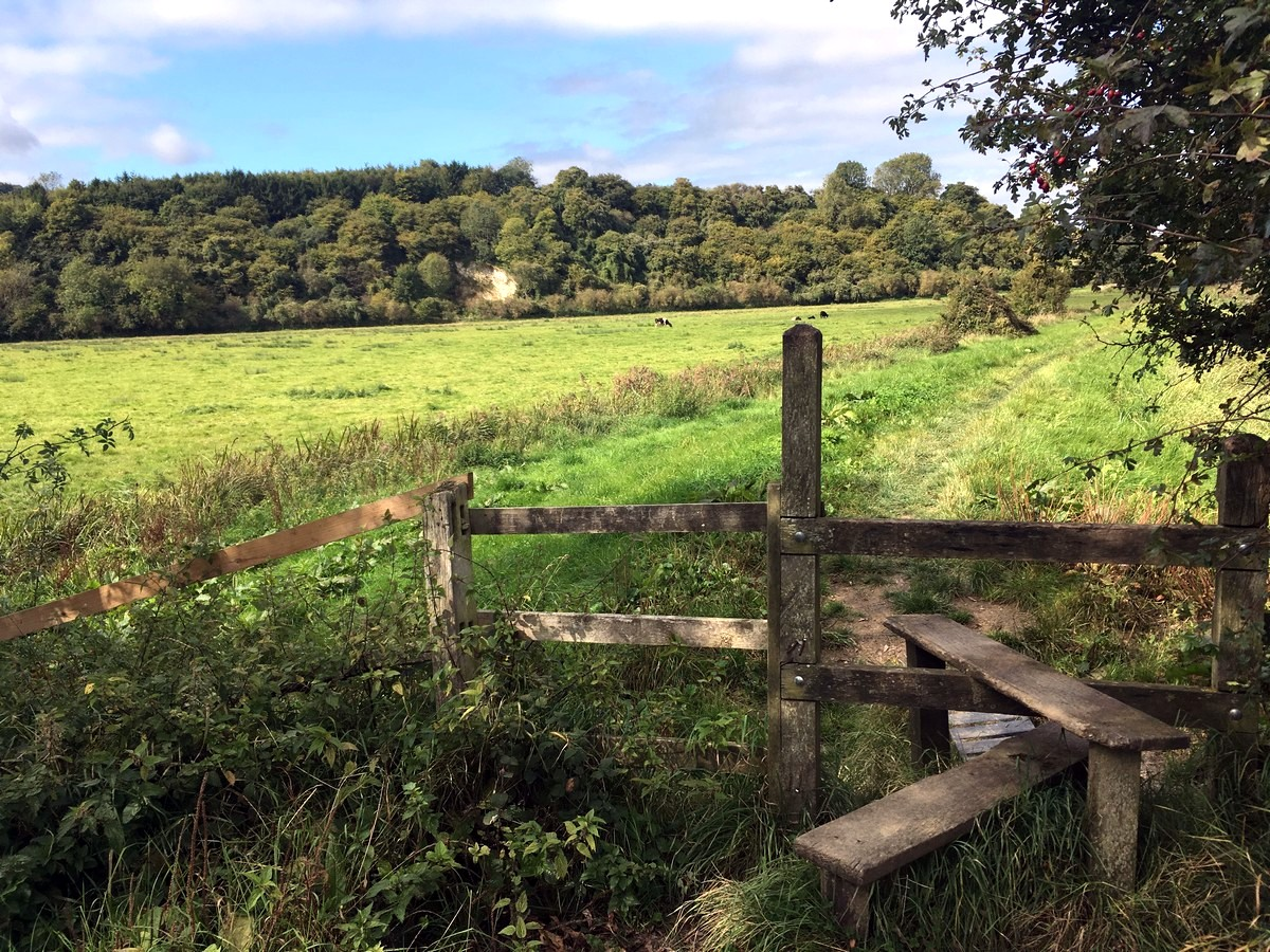 Crossing a stile near South Stoke farm on the Arundel Castle and Pubs Hike in South Downs, England