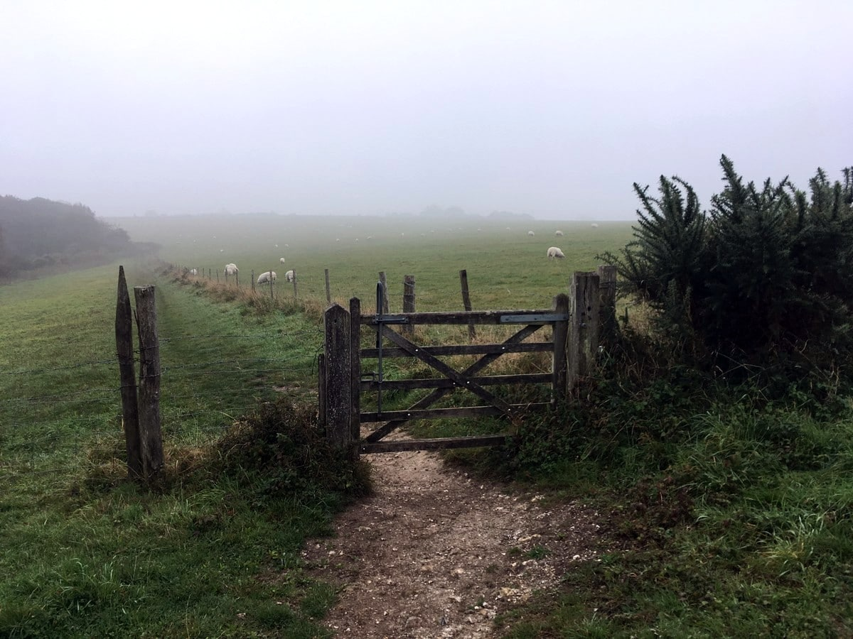 A foggy morning on the Downs on the Hassocks to Lewes Hike in South Downs, England