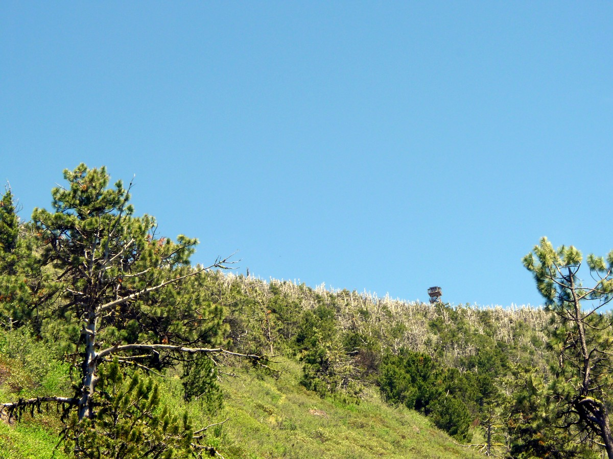 View of fire lookout from the trail on the Black Butte Hike near Bend, Oregon