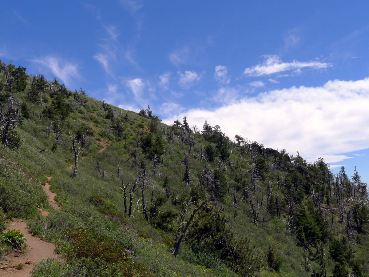 Trail along the steep sides on the Black Butte Hike near Bend, Oregon