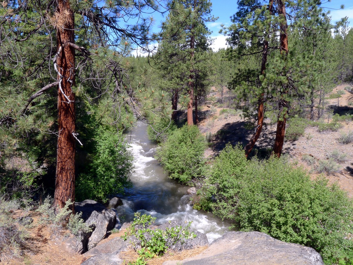 View of the above the river on the Whychus Creek Trail Hike near Bend, Oregon