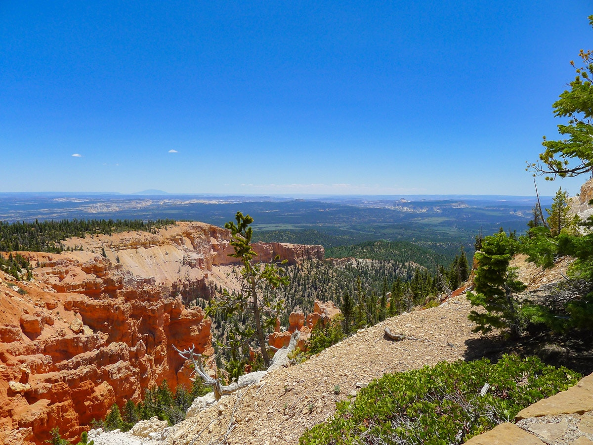 View towards the lower canyon basin on Bristlecone Loop trail hike in Bryce Canyon National Park