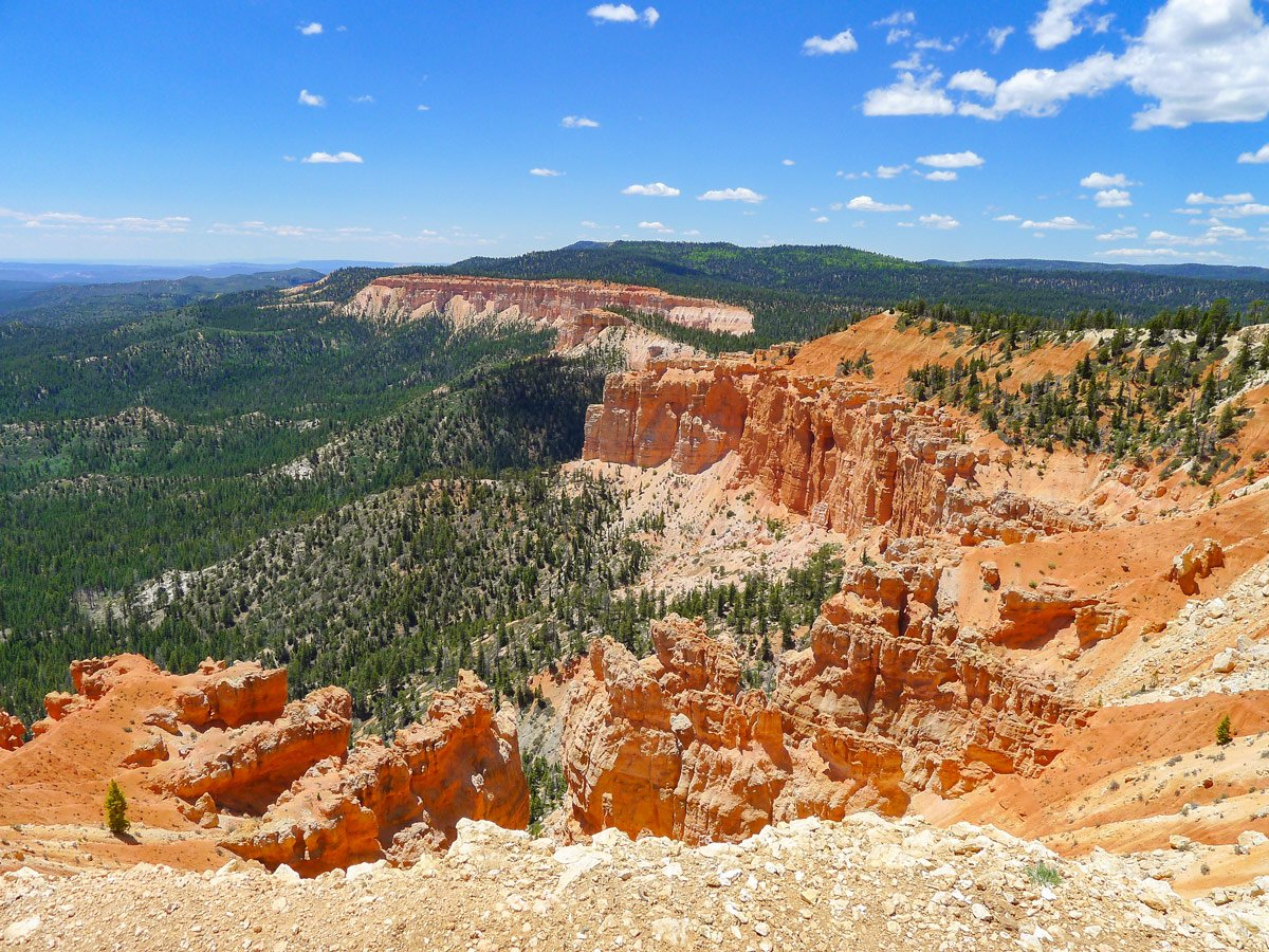 Red hoodoos on Bristlecone Loop trail hike in Bryce Canyon National Park