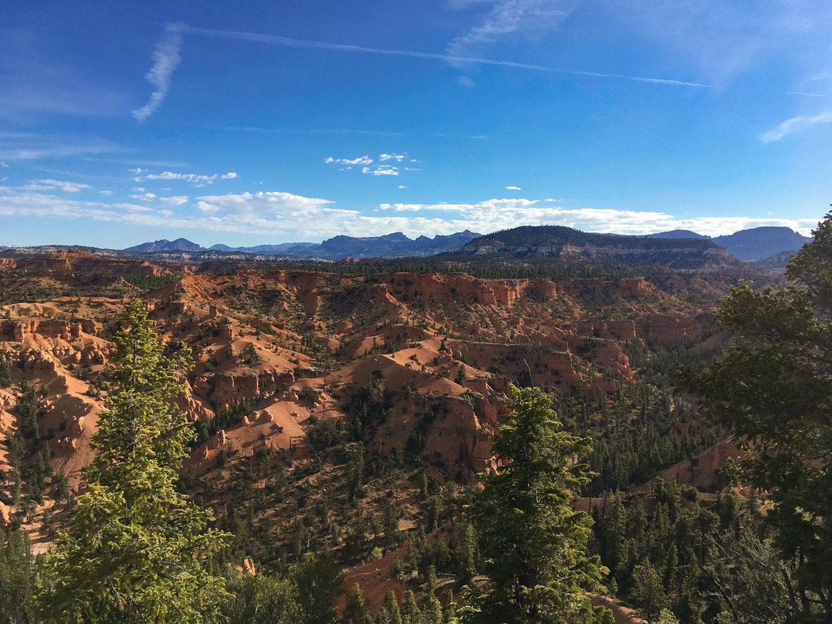 Stunning red sand on Cassidy trail hike in Bryce Canyon