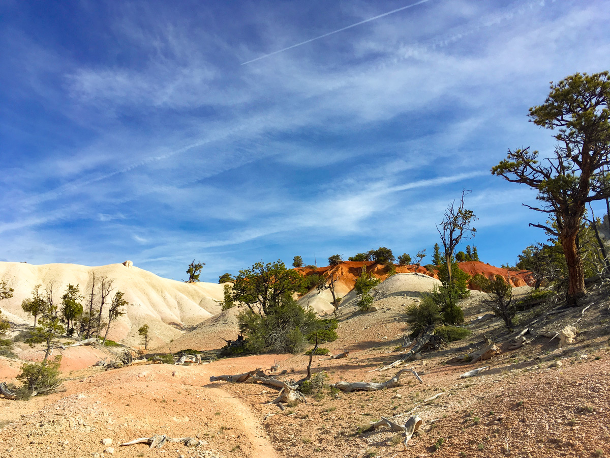 Small impressive white desert on Cassidy trail hike in Bryce Canyon National Park