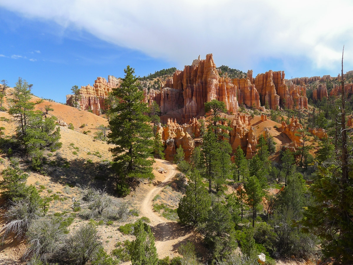 Scenery from Fairyland Loop Trail hike in Bryce Canyon National Park