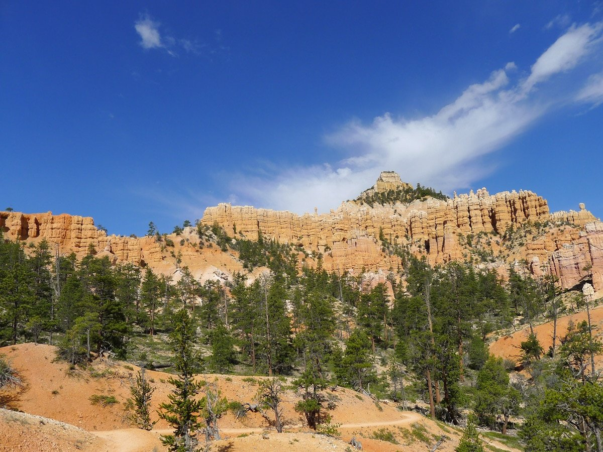 Fairyland Loop Trail hike in Bryce Canyon National Park has a beautiful view of the Canyon Rim