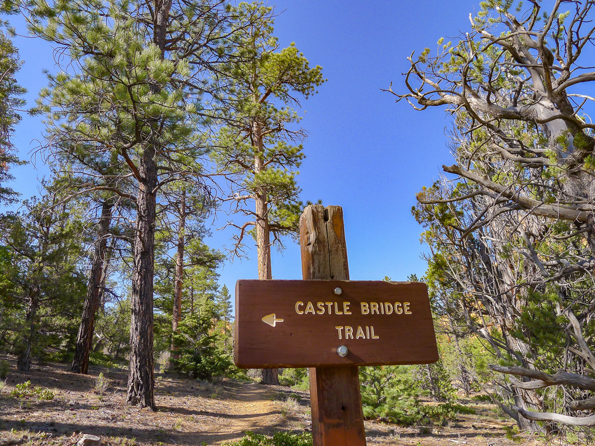 Trail junction on Golden Wall / Castle Bridge Loop trail hike in Bryce Canyon National Park
