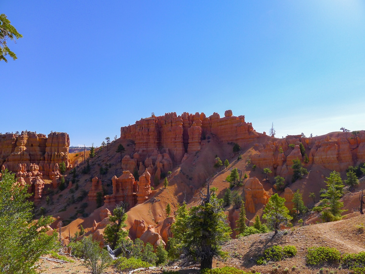 Golden Wall / Castle Bridge Loop trail hike in Bryce Canyon National Park is surrounded by beautiful hoodoos