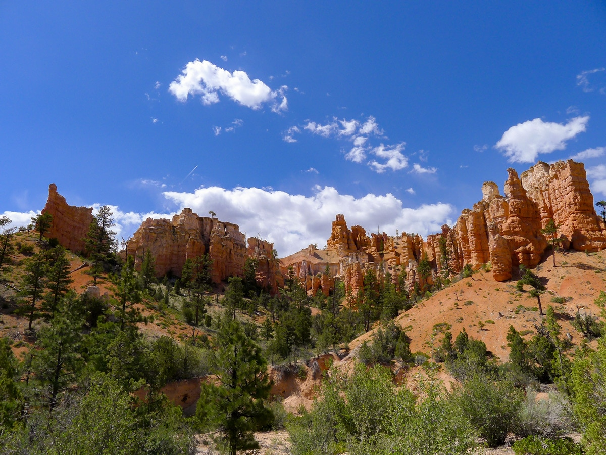 Beautiful hoodoos surrounding Mossy Cave trail hike in Bryce Canyon National Park