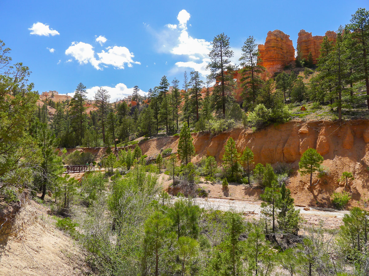 Beginning of Mossy Cave trail hike in Bryce Canyon National Park
