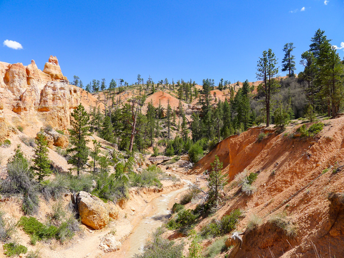 Looking down the river from the waterfall on Mossy Cave trail hike in Bryce Canyon National Park