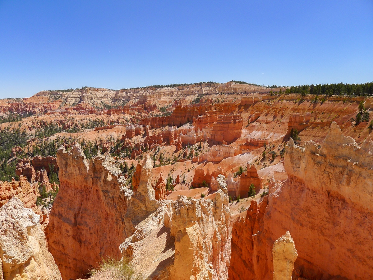 Queens Garden to Navajo Loop trail hike in Bryce Canyon National Park is surrounded by beautiful hoodoos