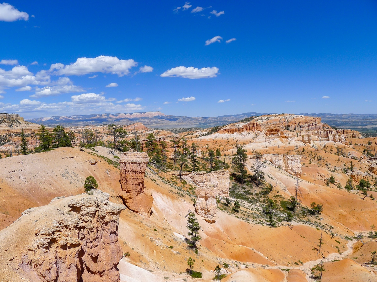 Red cliffs and dunes along Queens Garden to Navajo Loop trail hike in Bryce Canyon National Park