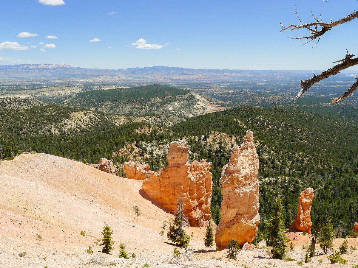 Cassidy trail hike in Bryce Canyon National Park is surrounded by hoodoos