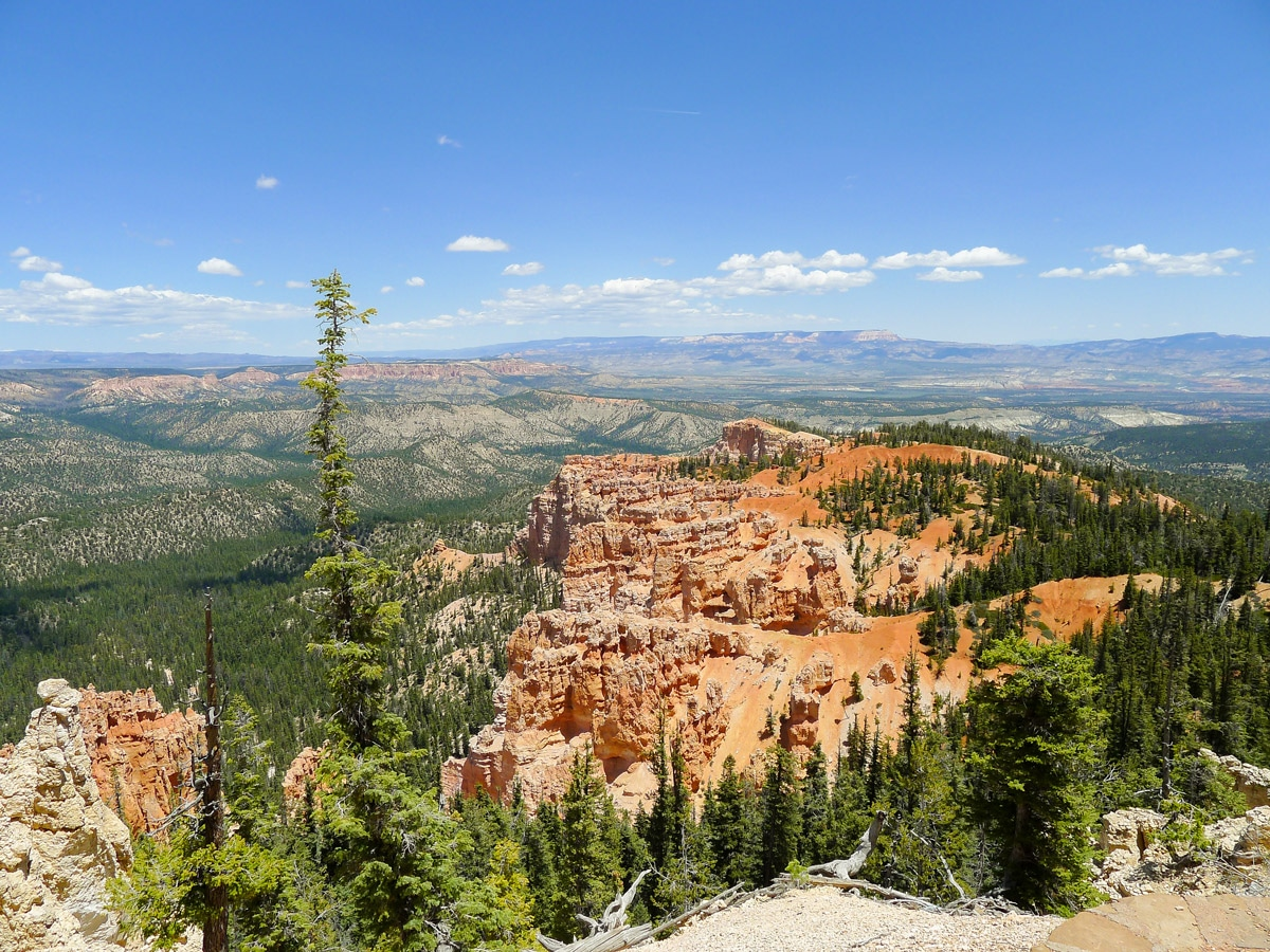 View north to the rim on Cassidy trail hike in Bryce Canyon National Park