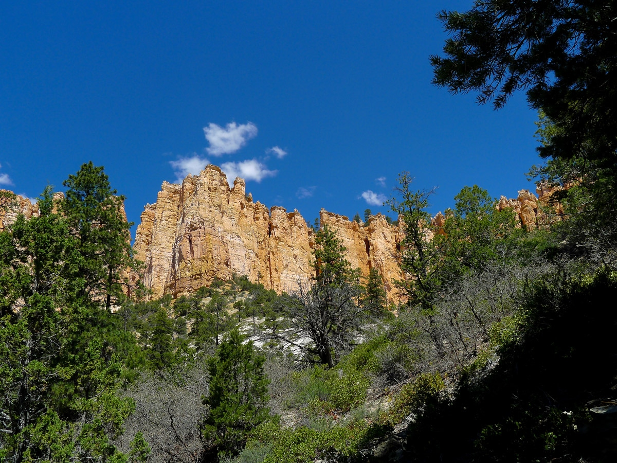 White cliffs on Swamp Canyon trail hike in Bryce Canyon National Park