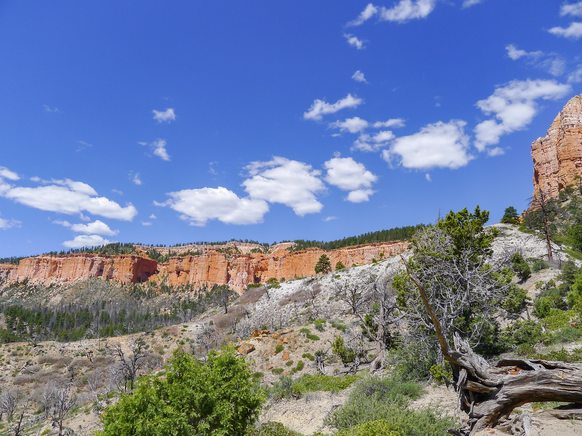 Colourful on Swamp Canyon trail hike in Bryce Canyon National Park