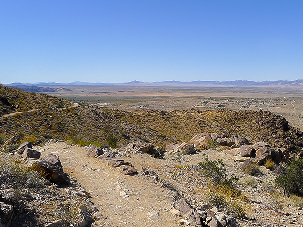 View of the 49 Palms Oasis hike in Joshua Tree National Park, California