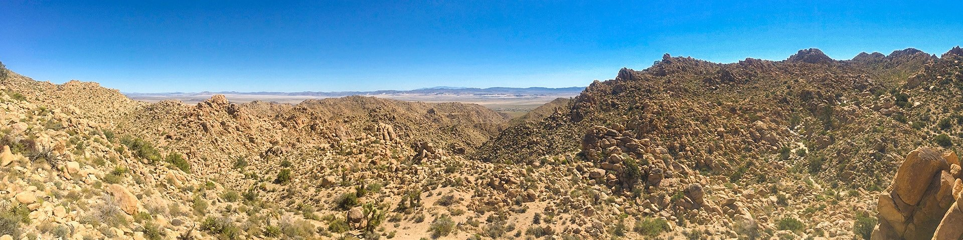 Panorama of the Boy Scouts trail hike in Joshua Tree National Park, California