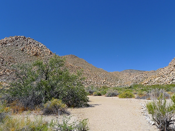 Scenery from the Boy Scouts trail hike in Joshua Tree National Park, California