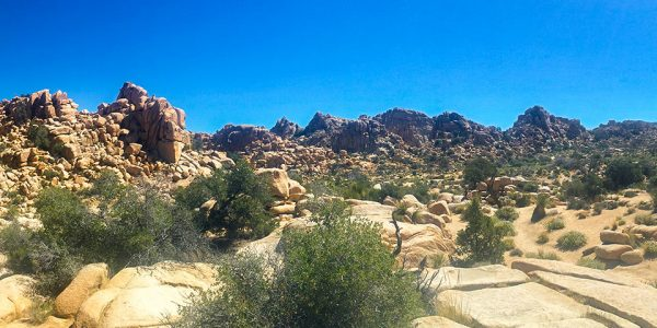 Panorama of the Hidden Valley Loop Trail in Joshua Tree National Park, California