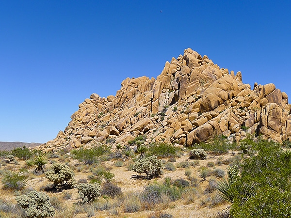 Indian Cove Nature Loop trail in Joshua Tree, California