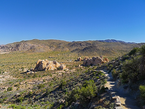 Views from the Ryan Mountain hike in Joshua Tree National Park, California