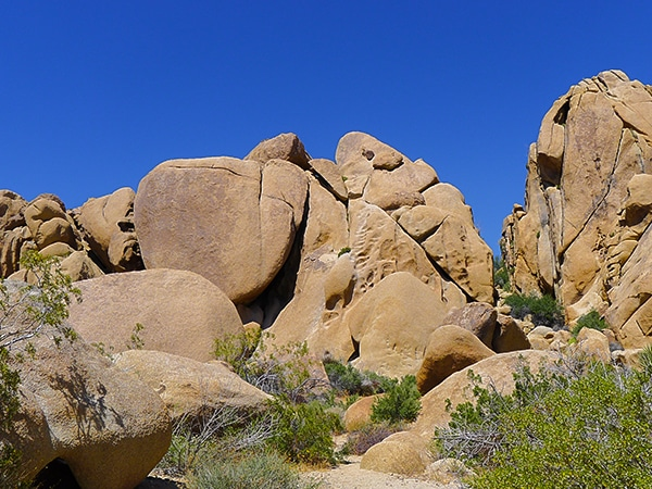 Scenery from the Split Rock trail hike in Joshua Tree National Park, California