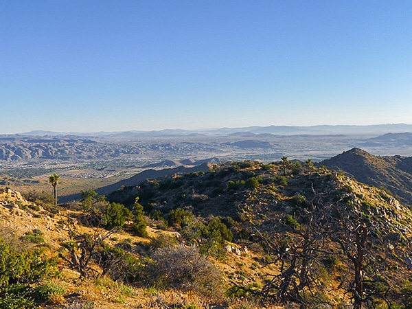 Warren Peak hike in Joshua Tree National Park has beautiful views