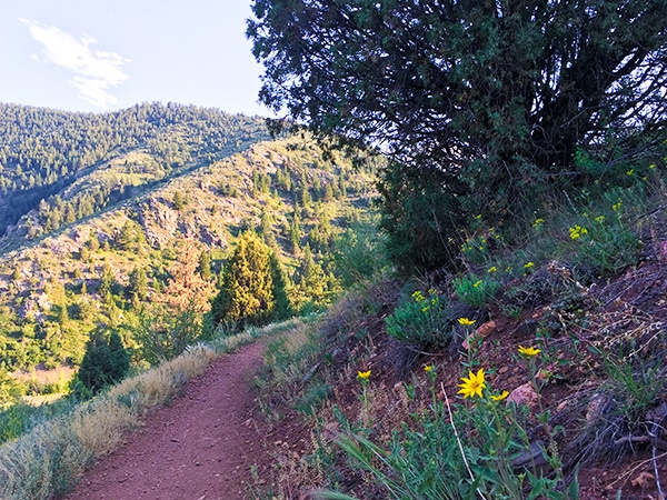 Trail of the Centennial Cone Park hike in Denver, Colorado