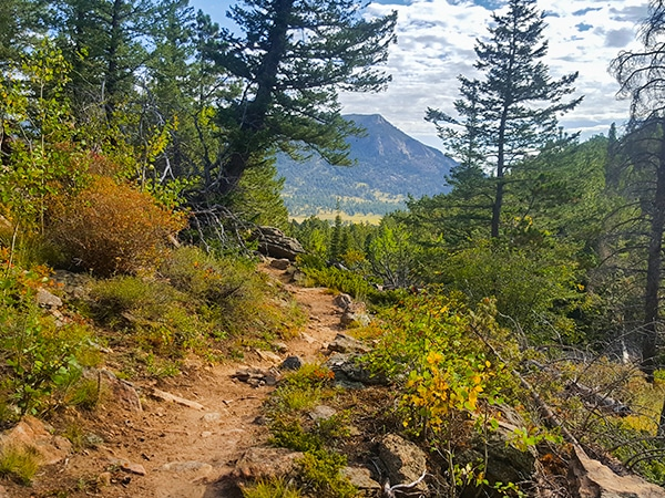 Trail of the Beaver Meadows Loop hike in Rocky Mountain National Park, Colorado