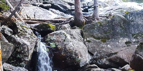 Trail of the Cascade Falls hike in Rocky Mountain National Park, Colorado