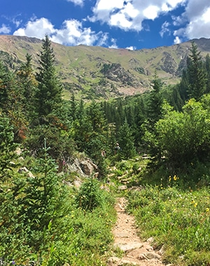Scenery from the Pitkin Lake Trail hike near Vail, Colorado