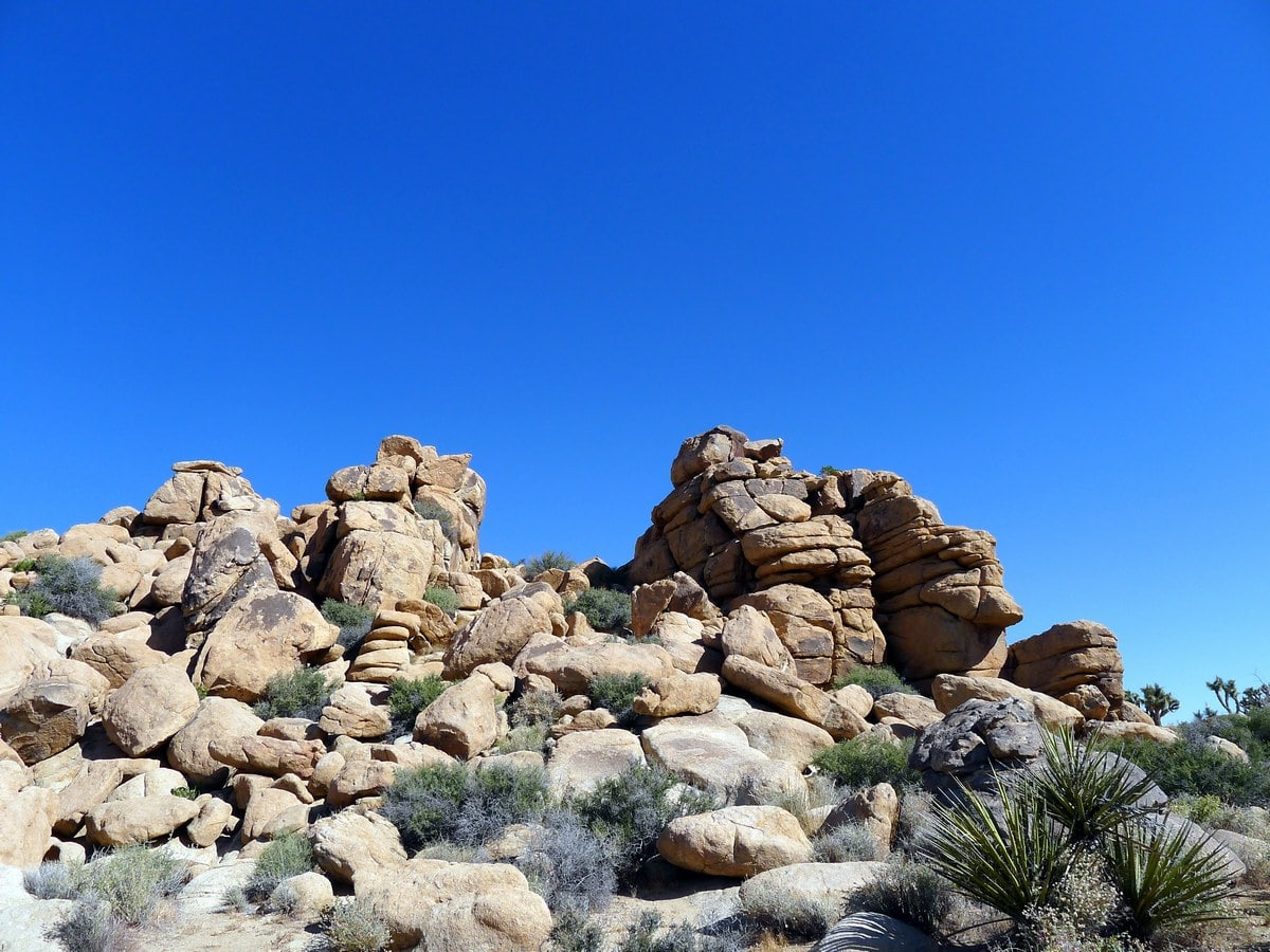 Rock formation on the Boy Scouts Trail Hike in Joshua Tree National Park, California