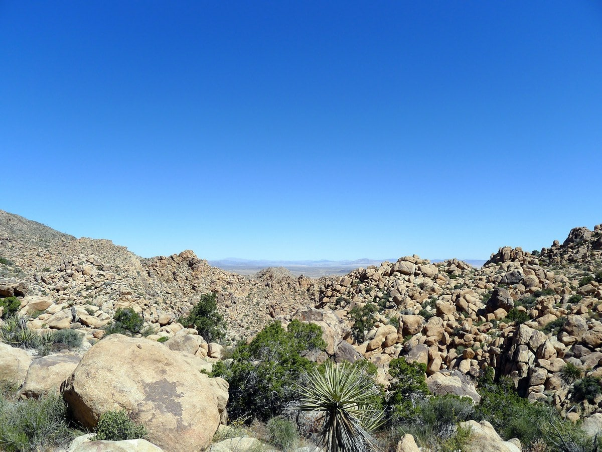 Monzogranite rock formations on the Boy Scouts Trail Hike in Joshua Tree National Park, California