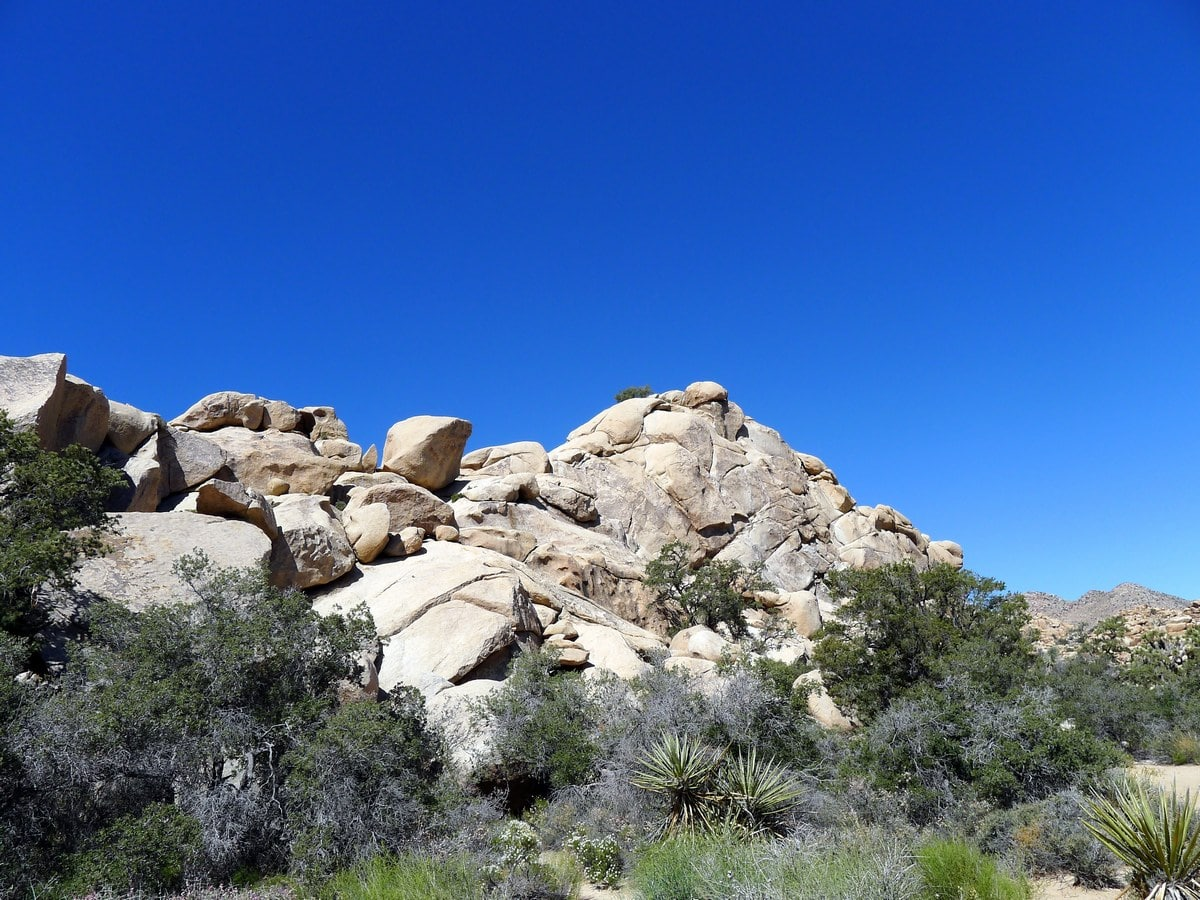 Looking across the valley from the Hidden Valley Loop Hike in Joshua Tree National Park, California